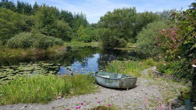 Gardens in Ceredigion - Bwlch y Geuffordd