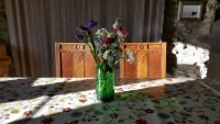 Cwt Mochyn holiday cottage - welcome flowers